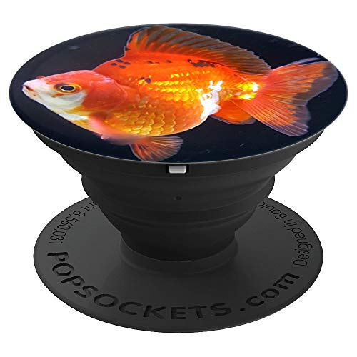 Fancy Goldfish Tank Bubble Eye Goldfish For Sale Ryukin - PopSockets Grip and Stand for Phones and Tablets