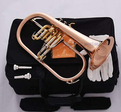 FidgetGear Professional Rose Brass Bb Flugelhorn Monel Valve New Flugel Horn 2Pc Mouthpiece from FidgetGear