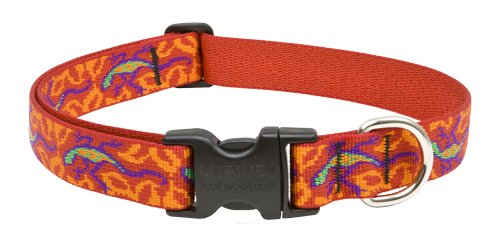 Go Go Gecko 1 Adjustable Large Dog Collar - Size: Medium