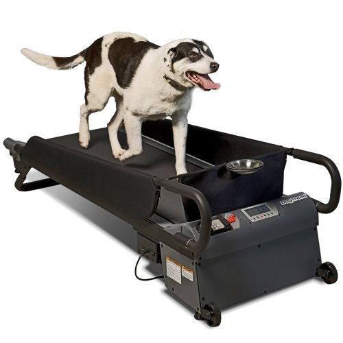 PetZen DogTread Dog Treadmill, Up to 50-Pounds,...