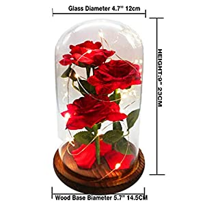 URBANSEASONS Beauty and The Beast Rose Enchanted Rose,Red Silk Rose and Led Light with Fallen Petals in Glass Dome on Wooden Base, for Valentine's Day Wedding Anniversary Mother's Day Birthday Party 5