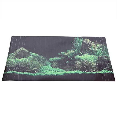 Póster para Fondo Acuario Duradero Impermeable Tanque de Pez Fresco Decoraciones de Peceras(76 * 46cm): Amazon.es: Productos para mascotas