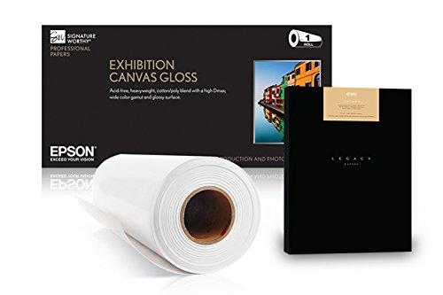 (Epson Epson DS Transfer Multipurpose)