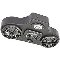 Kawasaki Mule 610 2 Speaker Stereo | MA300 | Lighted Kicker Speakers