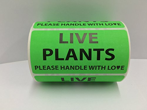 1 Roll 4x2 Green LIVE PLANTS / HANDLE WITH LOVE Special Handling Shipping Warehouse Pallet Stickers 500 labels per - Warehouse Shipping