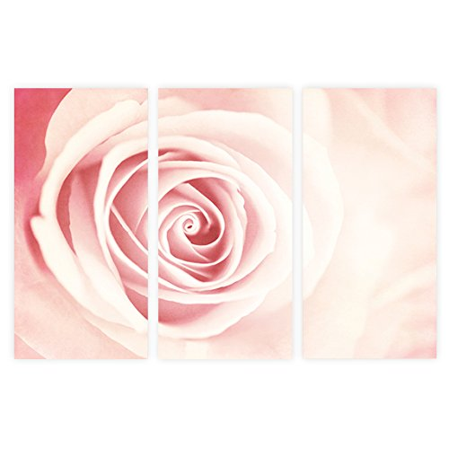 Amazoncom Blush Wall Art Set Blush Pink Wall Decor 3 Piece