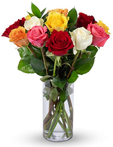 Benchmark Bouquets Dozen Rainbow Roses, With Vase (Fresh Cut Flowers)