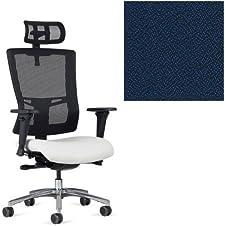 Office Master Affirm Collection AF529 Ergonomic Executive High Back Chair - JR-69 Armrests - Black Mesh Back - Grade 1 Fabric - Spice Juniper Blue 1164 PLUS Free Ergonomics eBook