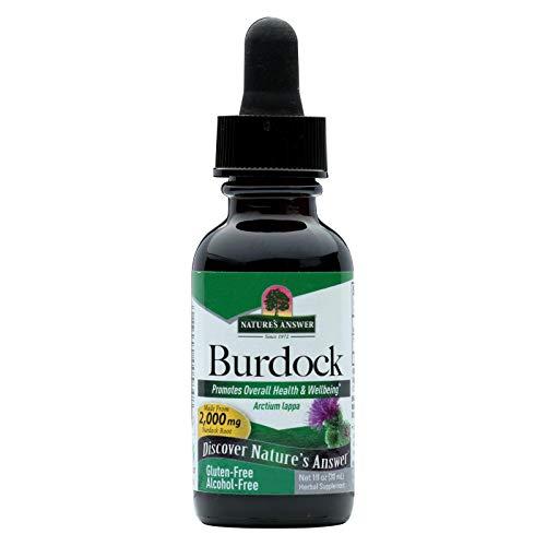 (Nature's Answer Burdock Root Alcohol Free - 1 fl oz)