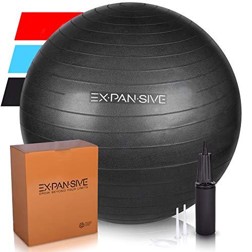 Expansive Living Anti Burst Exercise Ball (Black, 65cm) -2,000lbs STATIC STRENGTH STABILITY, PROFESSIONAL GRADE. Balance Ball | Physio Ball | Swiss Ball | Yoga Ball | Birthing Ball | Office Ball Chair