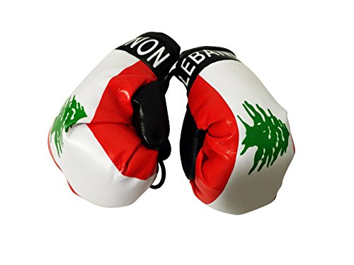 Flag Mini Small Boxing Gloves To Hang Over Car Automobile Mirror   Asia   Africa  Country  Lebanon