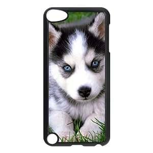 PERRO cuadro animal Cachorro de Husky siberiano FOTOS funda iPod Touch 5 Funda Caso de la cubierta negro, funda de plástico caja del teléfono celular