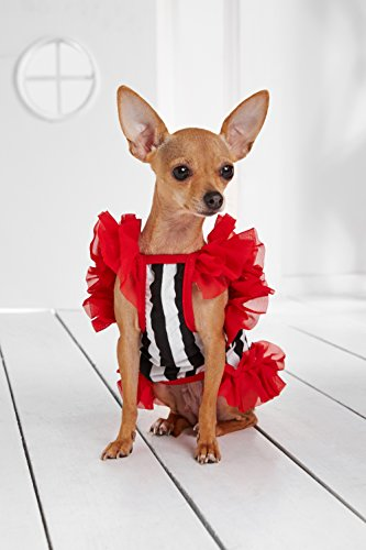 """Small Dog Striped Dress With Ruffles Satin Bow Chain Dogs Cotton Summer Clothes (Toy Plus: 10"""" / 5-9 lbs, Red, Black, White) by Nothing But Love Pets (Image #2)"""