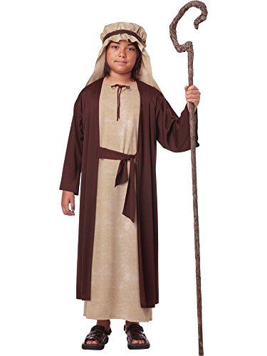 Biblical Jesus Child Costumes (California Costumes Saint Joseph Child Costume, Medium)