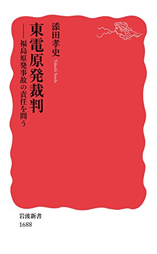 東電原発裁判――福島原発事故の責任を問う (岩波新書)