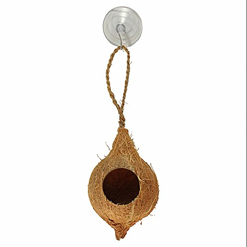 Hanging Coconut Hide With Suction Cup by Pangea