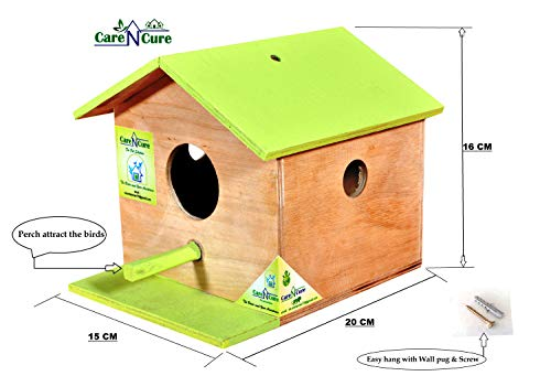 Care N Cure Bird House Nest Box for Sparrow (Light Green_15X16X20 cm)