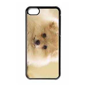 WJHSSB Print Pomeranian Pattern PC Hard Case for iPhone 5C