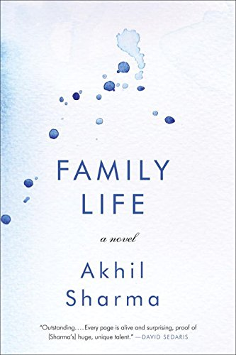 Image of Family Life: A Novel