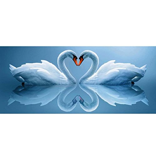 SO-buts 5D DIY Full Square Drill Muiltycoloured Diamond Painting Swans Of  Love Embroidery Cross Stitch Arts Craft Canvas Wall Decor Embroidery  Paintings ... b29c363e5e9b
