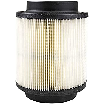 Polaris New OEM Air Filter Element Cartridge 1262218 Razor RZR 170