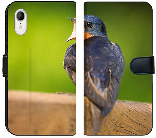 Apple iPhone XR Flip Fabric Wallet Case Image ID 19843922 Barn Swallow Hirundo Rustica Perching on a Fence in Maryland During t