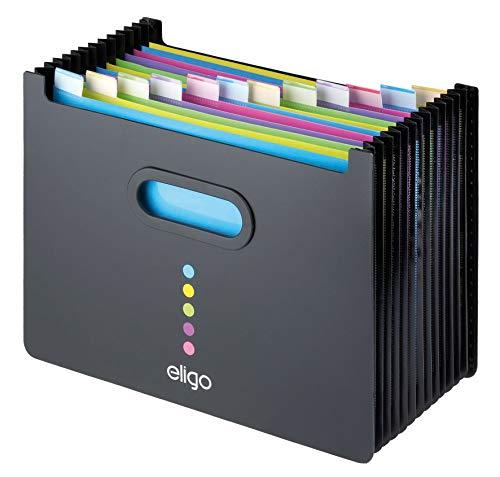 Eligo - Archivador tipo acordeon (13 compartimentos, DIN A4, formato horizontal), color negro