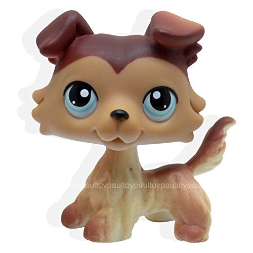 TeeNoi #58 Rera Littlest Pet Shop Brown Collie Dog Puppy Blue Eyes LPS Animal Toy NEW