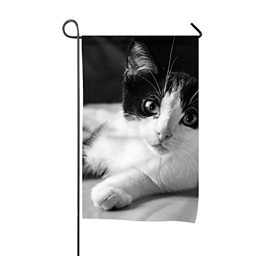 (WilBstrn Black and White Cat Clip Art Welcome Garden Flag Vertical Outdoor and)