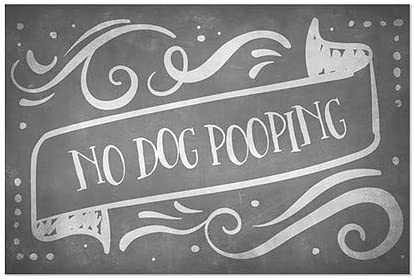 30x20 CGSignLab 5-Pack Chalk Banner Window Cling No Dog Pooping