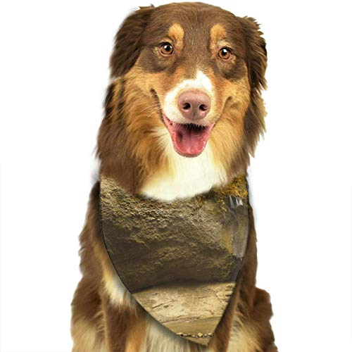 LODRR Pet Scarf, The Garden of Eden Neckerchief/Fashion -