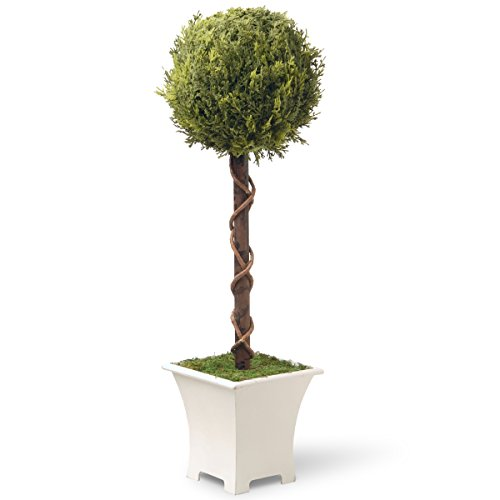 (National Tree 30 Inch Single Ball Topiary Tree with White Wooden Base (RAS-MH208582A) )