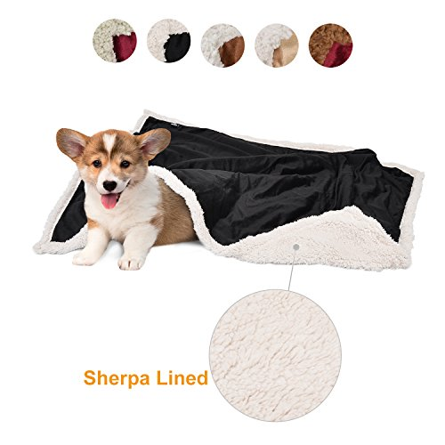 Puppy Blanket,Super Soft Sherpa Dog Blankets and Throws Cat Fleece Sleeping Mat for Pet Small Animals 45x30 Black