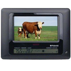 Amazon.com : POLAROID XSA-00770S 7-inch Digital Picture