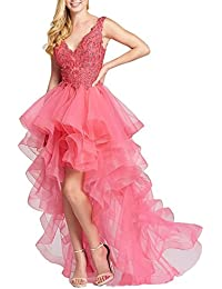 Hi-Lo Prom Dress Deep V Neck Tulle Beach Evening Dress Party Gown