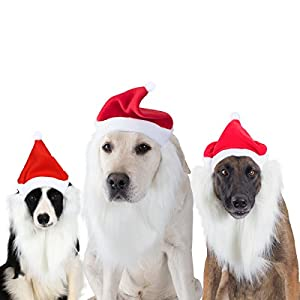 FOMATE Dog and Puppy Santa Hat costume for Christmas and Holidays, Dog and Puppy Santa Claus Cosplay Hair & Beard accessories for Holiday Parties