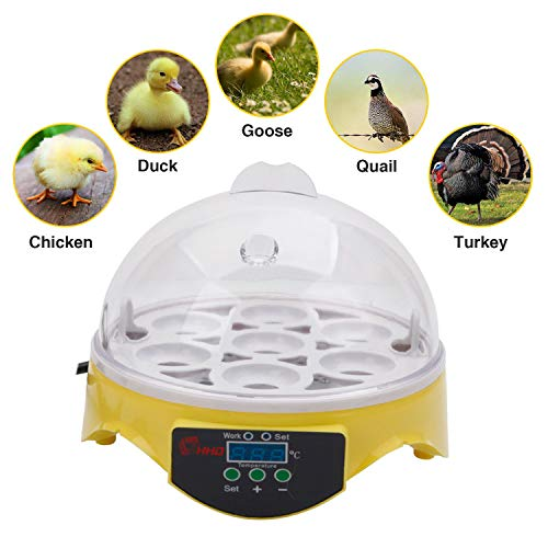 7-Egg Mini Practical Poultry Electric Incubator with Temperature Control Digital Poultry General Purpose for Chickens Ducks Turkey Quail Fertilized Eggs Small- Yellow