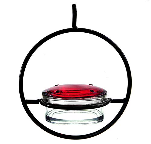 ore Decorative Hummingbird Wild Bird Feeder, Glass Bird Seed Dish, G423F - 1 Hanging Garden Bird Food Dish ()