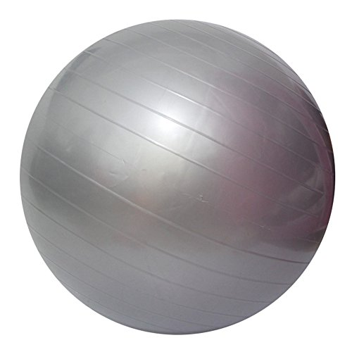 Yoga Fitness Ball Anti-Burst and Slip Resistant Ball with Pump (gray, M: Diameter:55cm/21.6