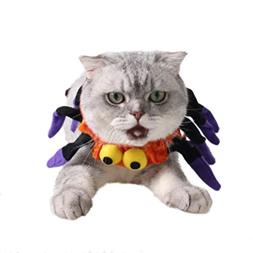 UAYHQ Pet Spider Decorative Collar Halloween Pet Holiday Accessories