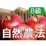 【B級品】竹嶋有機農園 紅玉4,5kg(化学農薬・化学肥料不使用) ※訳あり※傷あり