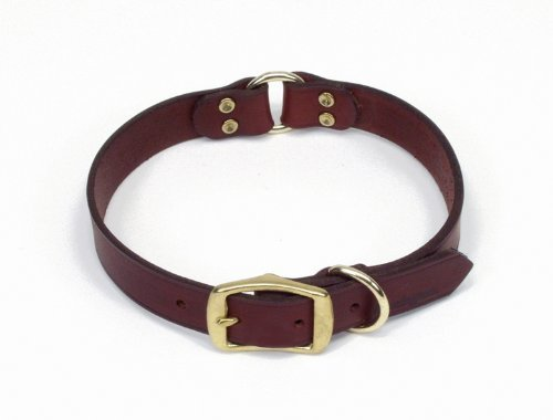 "Remington Dog Collar 1"" Leather Split Ring 22"""