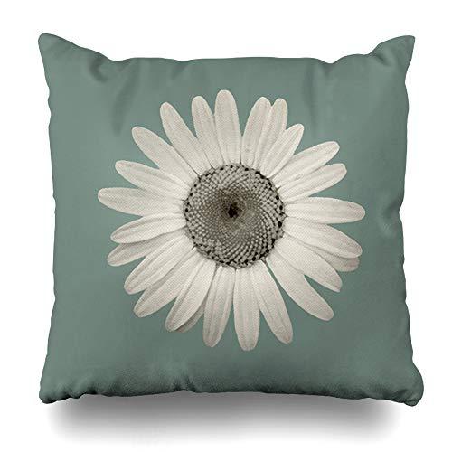 (Ahawoso Throw Pillow Cover Square 24x24 Inches Color Seafoam Green Gray Decorative Pillow Case Home Decor Pillowcase)