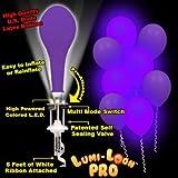 Lumi - Loons Balloon Lights Purple Balloons White Lights - 10 Pack