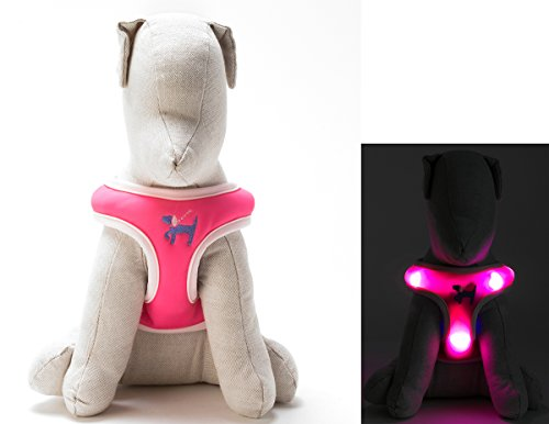 LED Dog Comfort Harness - Patented Light Up Glowing Harness for Puppies and Dogs of All Kinds for Training and Outdoor Fun (Small 16