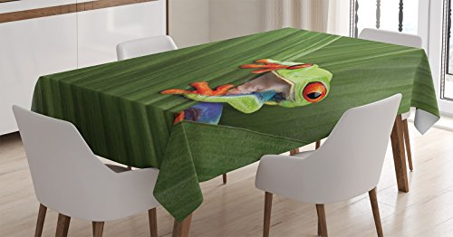 Ambesonne Animal Tablecloth, Red Eyed Tree Frog Hiding in Exotic Macro Leaf in Costa Rica Rainforest Tropical Nature, Dining Room Kitchen Rectangular Table Cover, 52