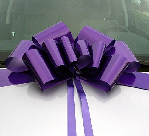 Purple Ribbon Bow (23