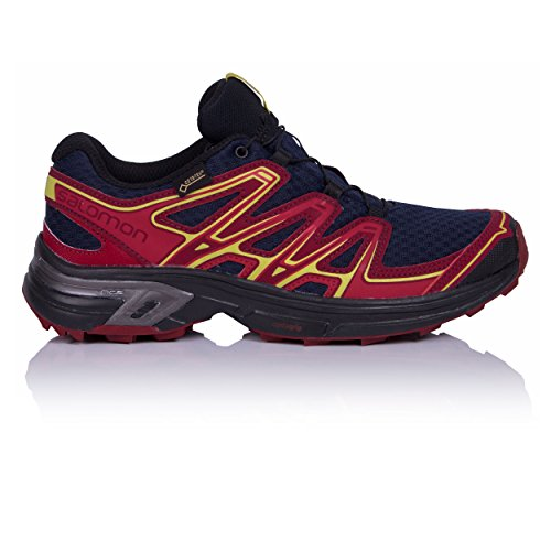 Salomon Ailes Femmes Flyte 2 Gtx Chaussures Trail Running, Gris, Rose 43,3 Eu