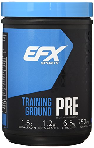 EFX Sports Training Ground Pre Workout Powder, Blueberry, 500 Gram (Blueberry Creatine)