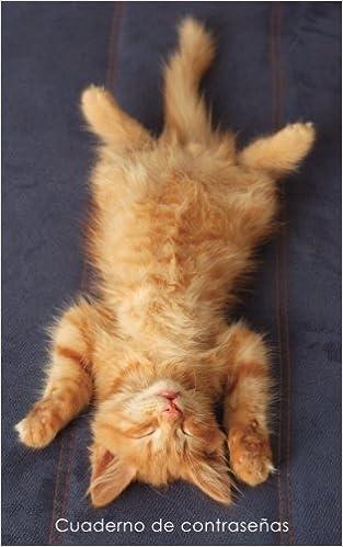 ... de direcciones y contraseñas en internet - Cubierta de gatito pelirrojo relajado (Cuadernos para los amantes de los gatos) (Spanish Edition): Cuadernos ...
